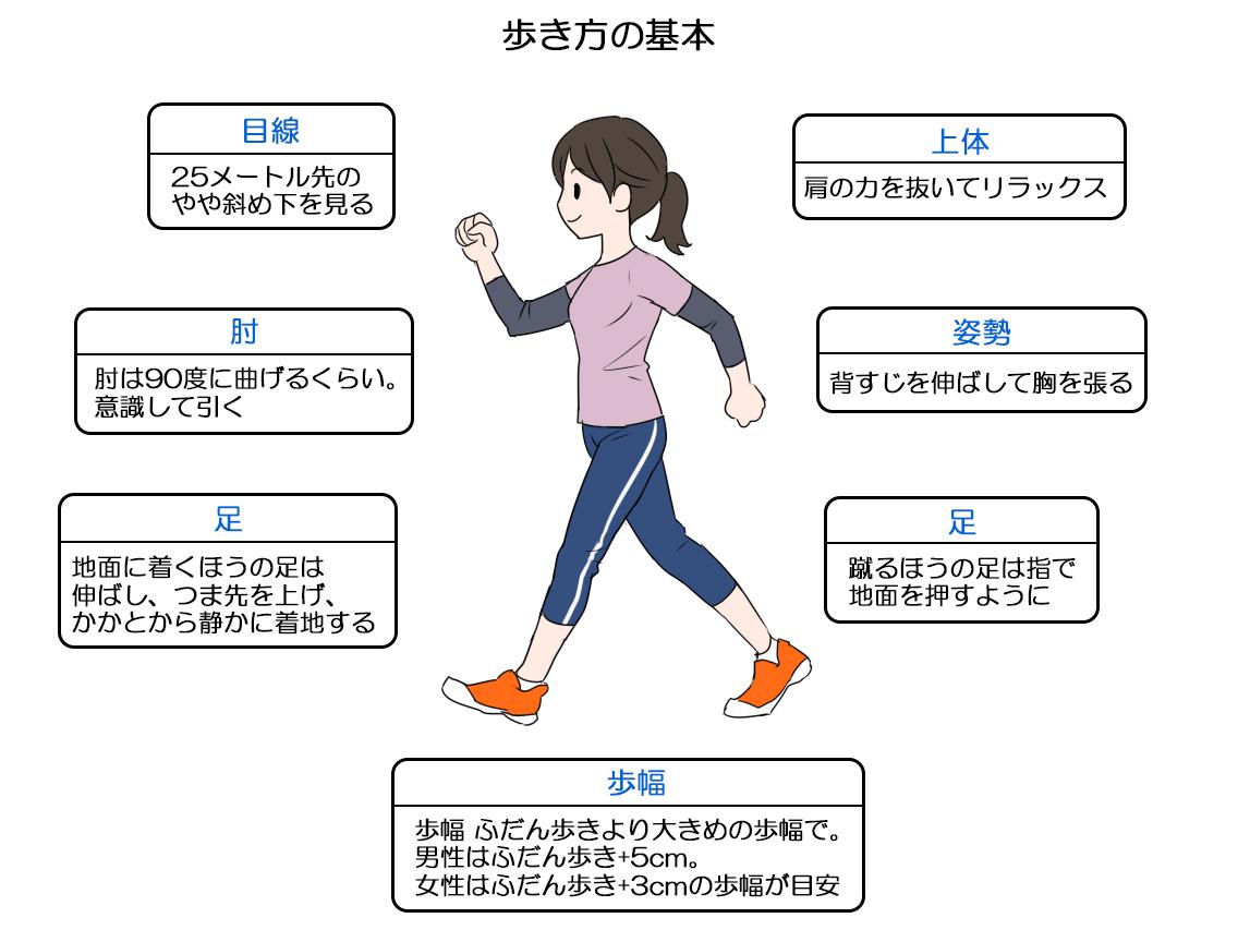 平均 歩幅