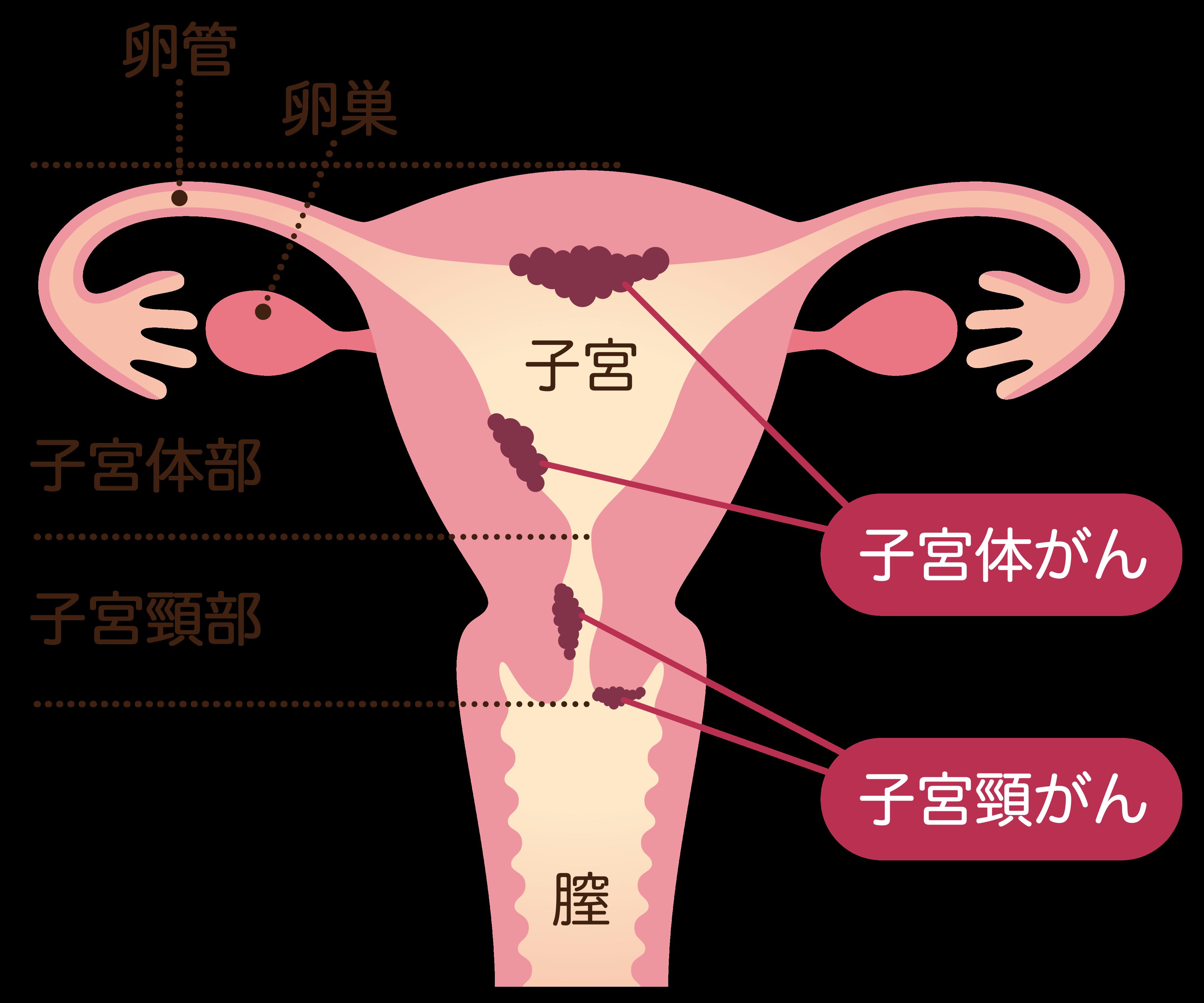 続く 出血 妊娠 初期